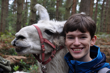 Third Year Biology students make friends with llamas on special trek