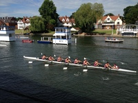 Henley Royal Regatta update