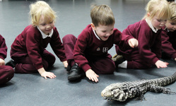 Reptiles, owls and robots excite all during Maths and Science Week